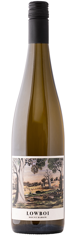 Wine Bottle for Lowboi